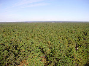 300px-2009-11-04_20-View_north_from_the_top_of_the_Apple_Pie_Hill_fire_tower