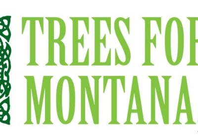 TFLMT_Logo_2Cspot